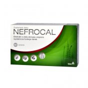 Nefrocal 60 tabl.